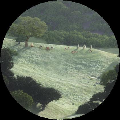 round-field